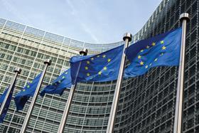 European Union (EU) flags