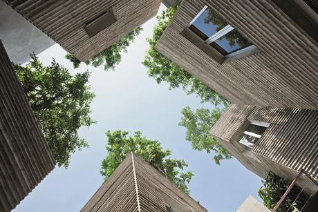 BAMBOO 04_courtyard