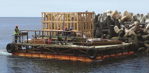 Transport using motorised pontoons