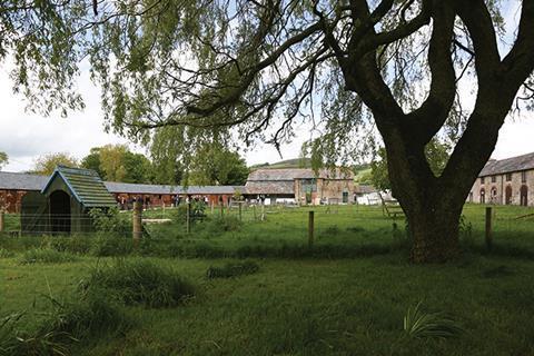 Pilsdon farm yard